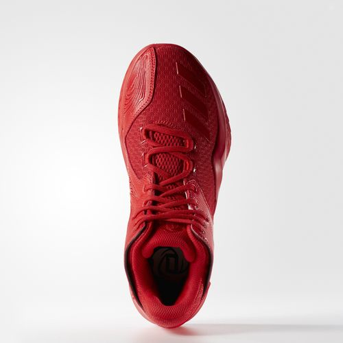 Adidas D Rose 773 V Performance Review!