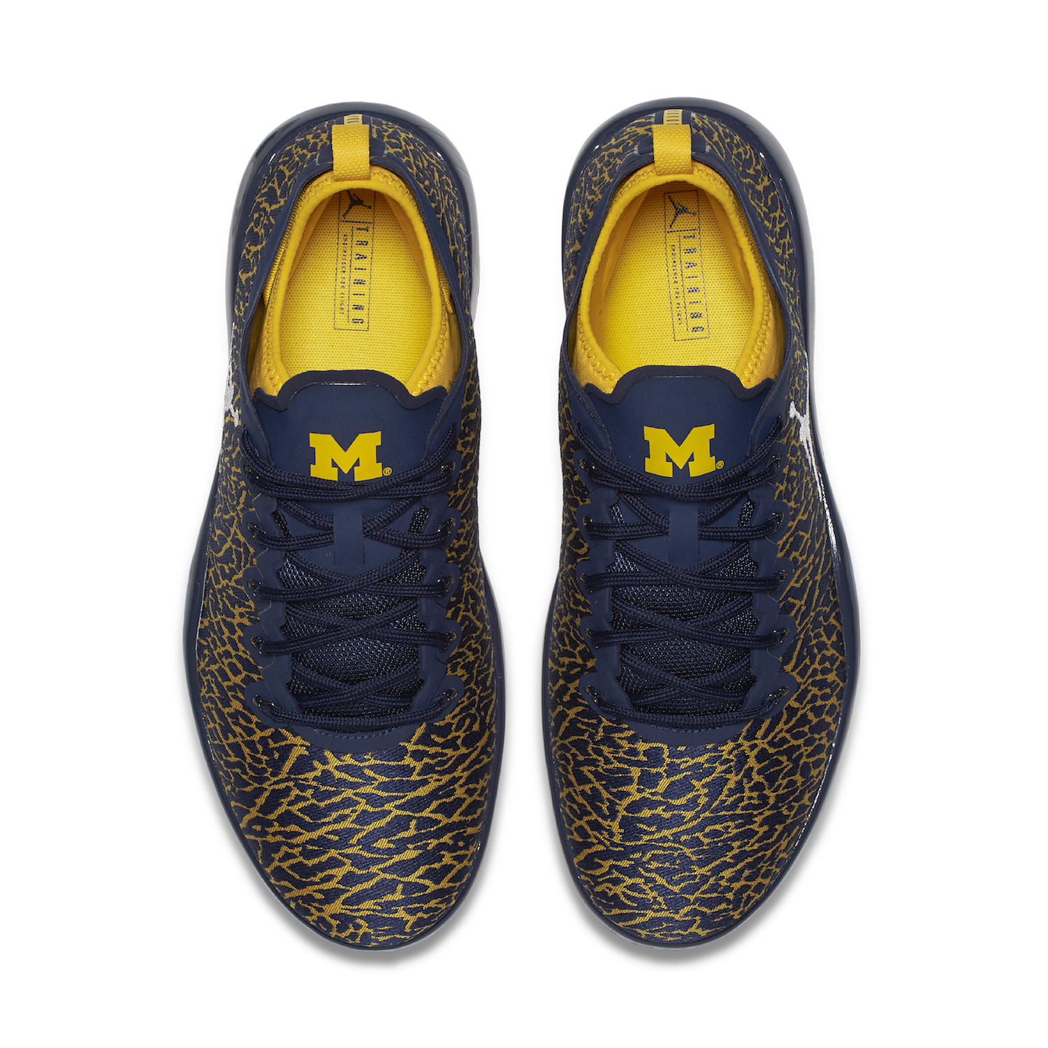 university of michigan jordan brand 11