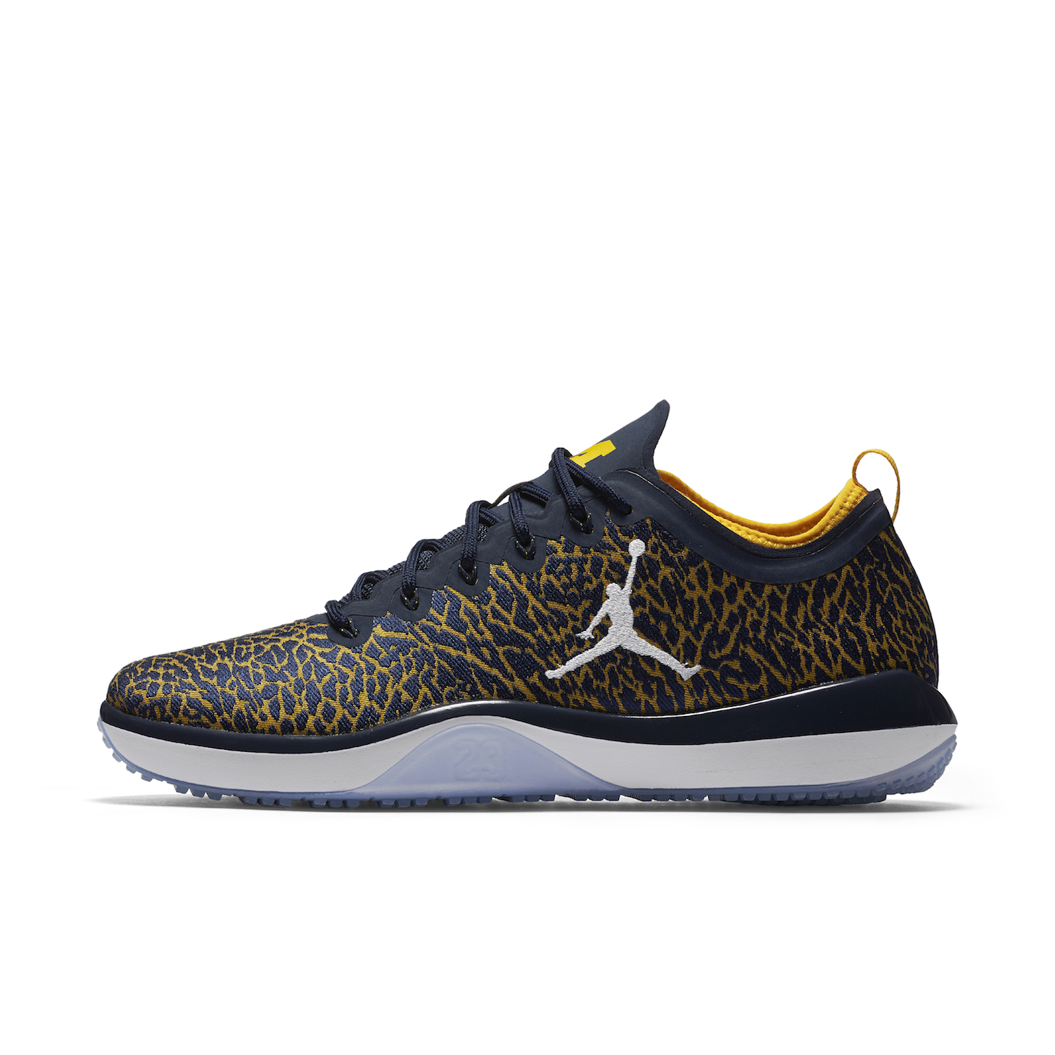 university of michigan jordan brand 8