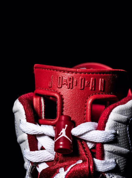 there-is-an-alternate-air-jordan-6-retro-coming-in-2017-5
