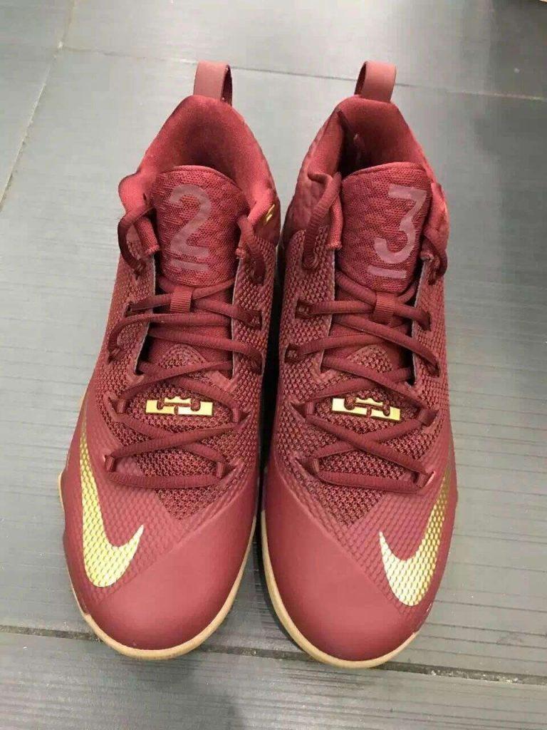 Nike Lebron Ambassador 9 - Front