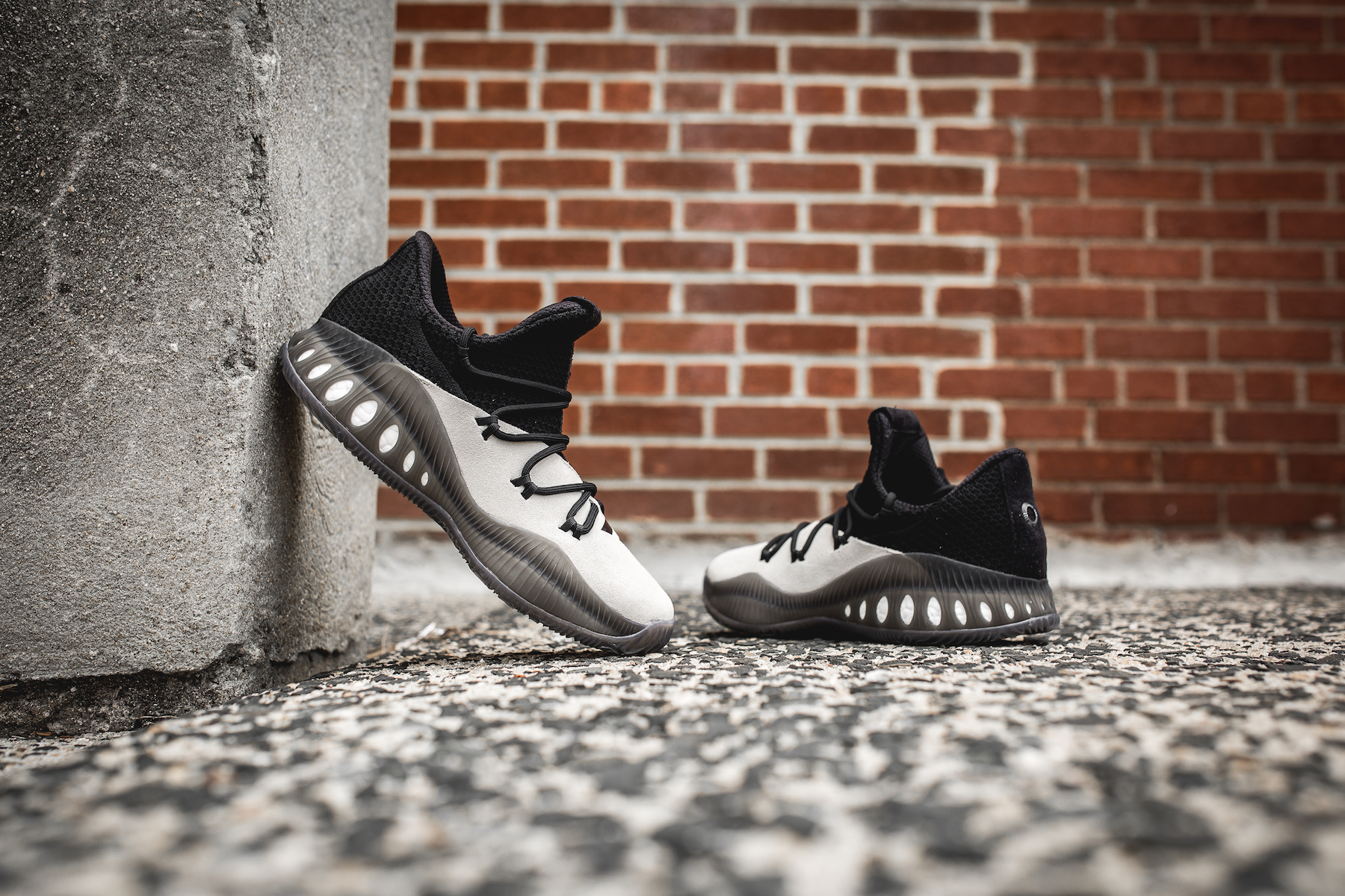 day one adidas Crazy Explosive Clay Brown black 1