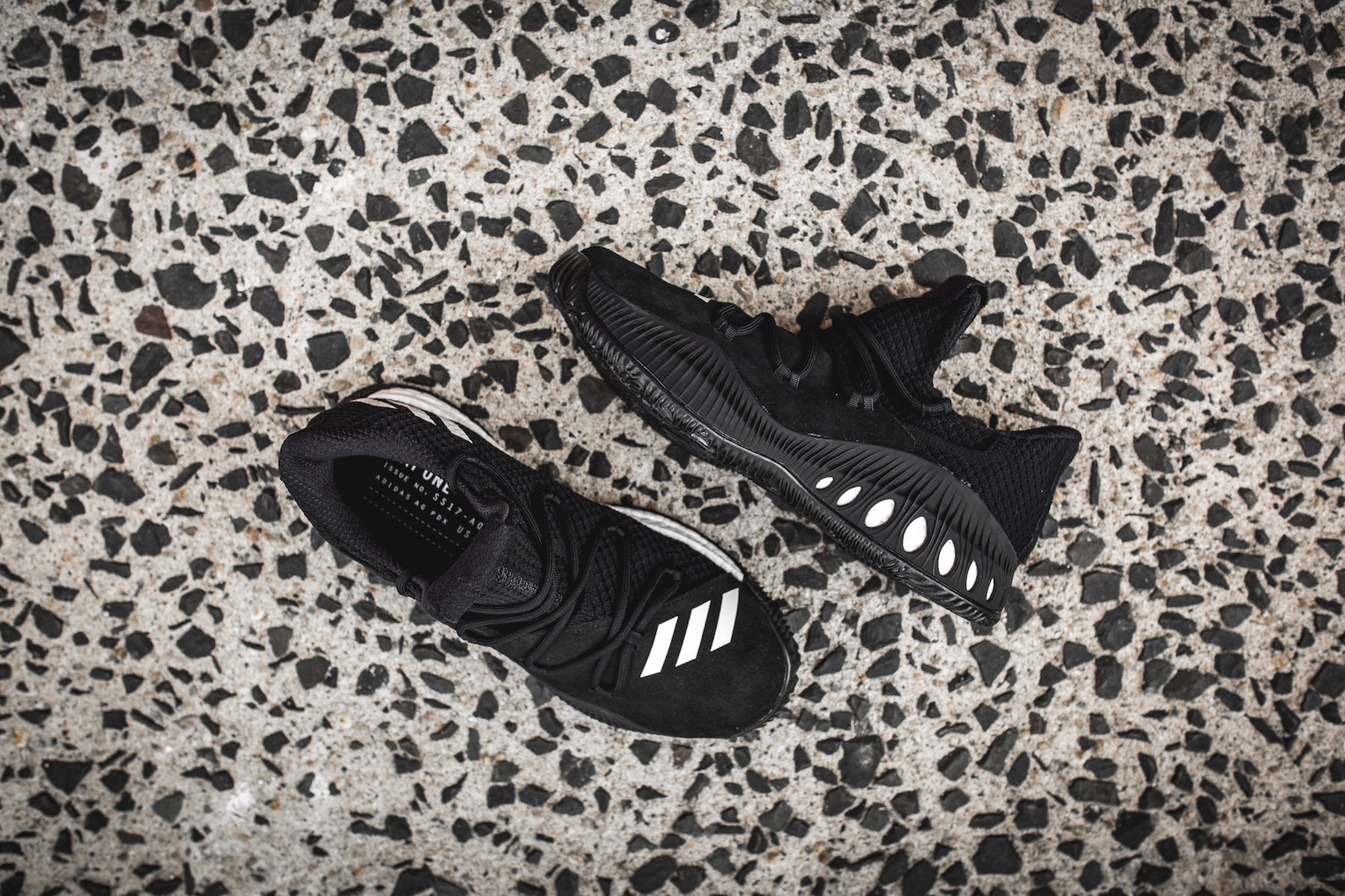 day one adidas Crazy Explosive black 5