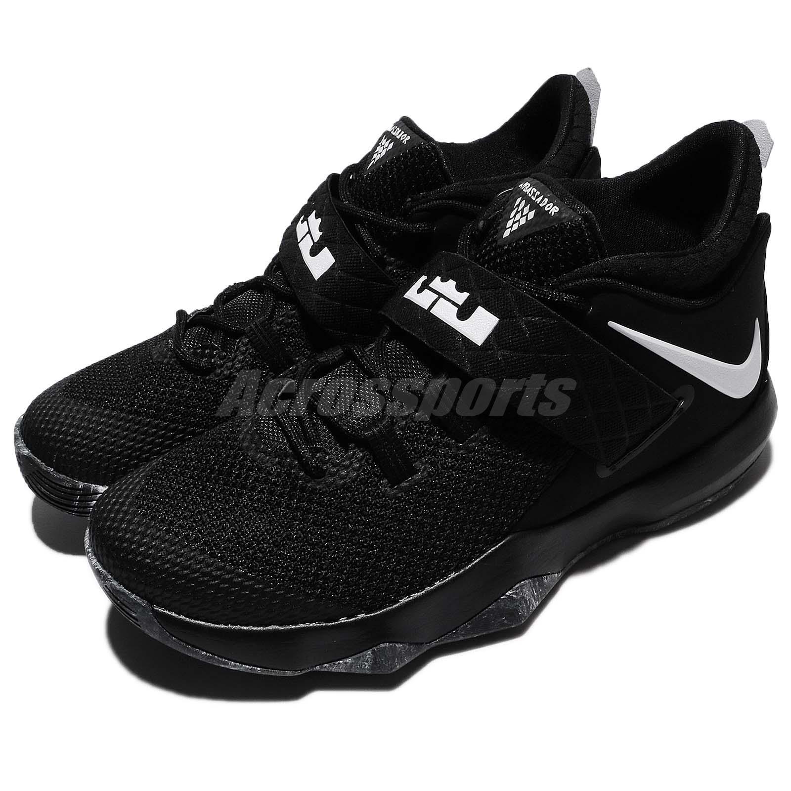 Nike Zoom Lebron Ambassador 10 - 1