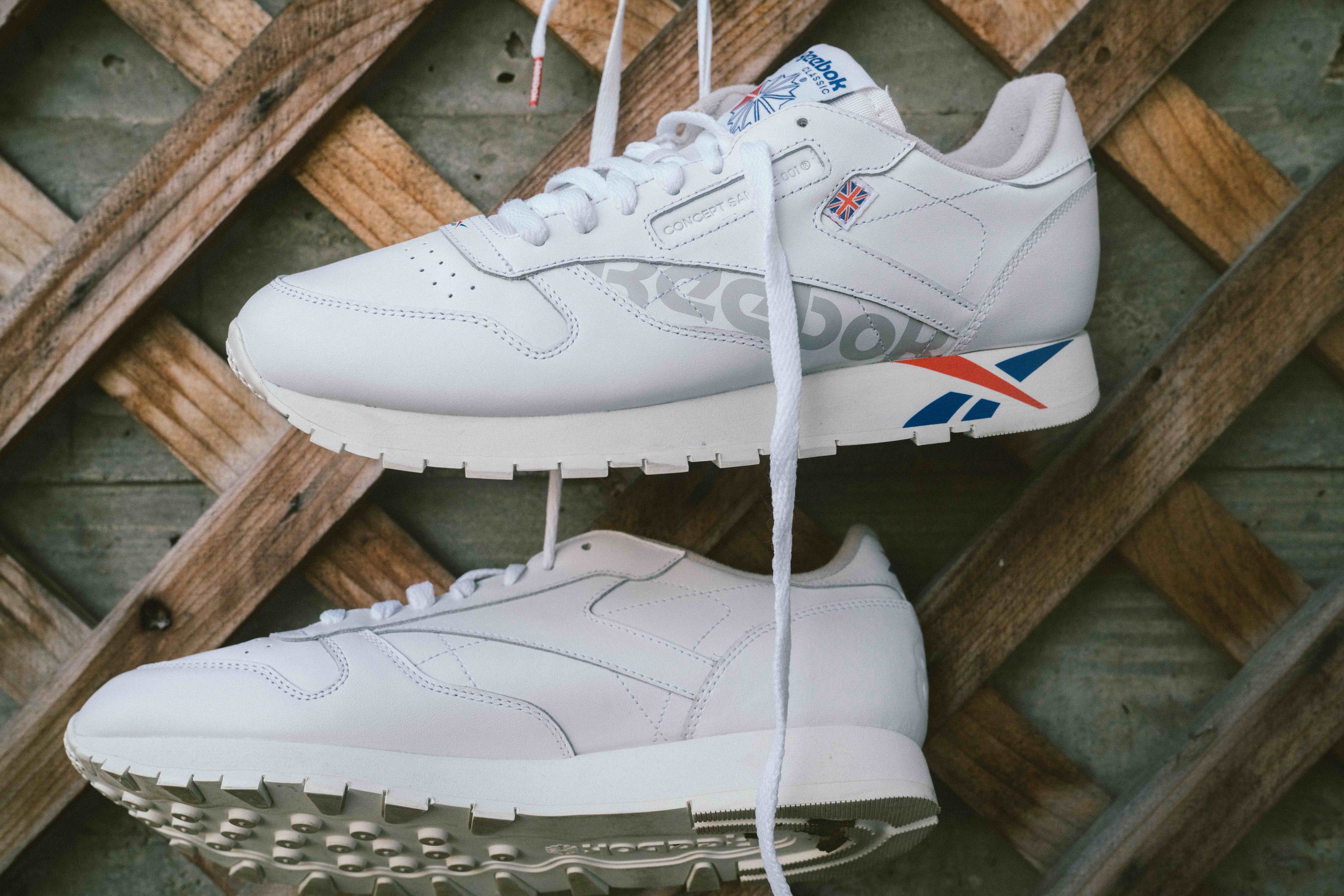 Reebok Classics Alter The Icon 3