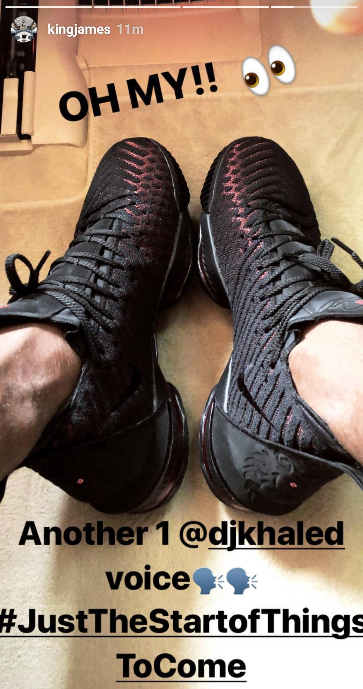 lebron foot