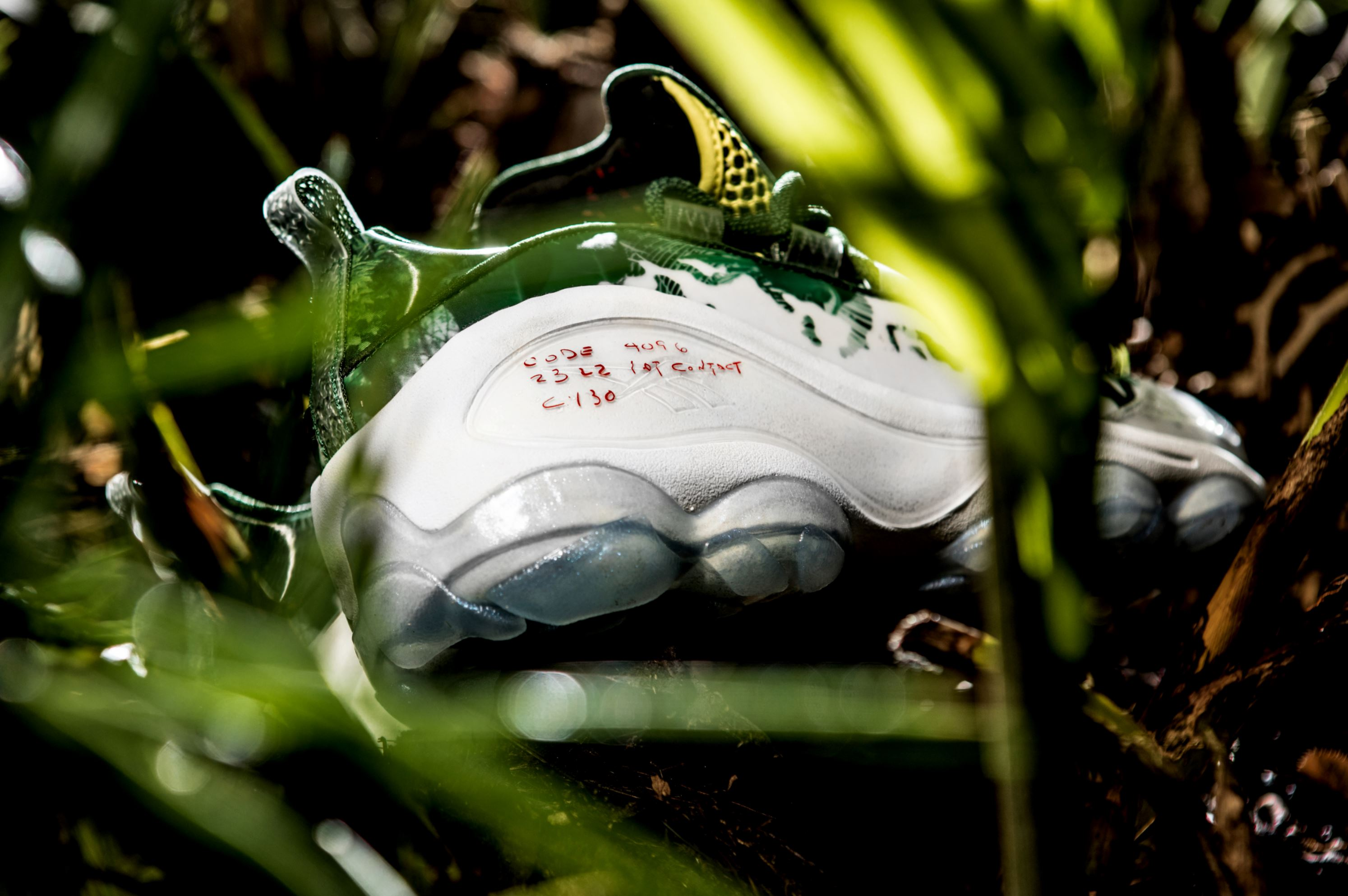 the predator reebok dmx run 10